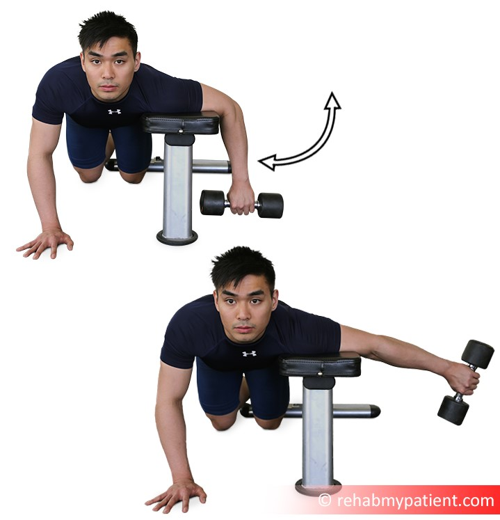 Anconeus exercises