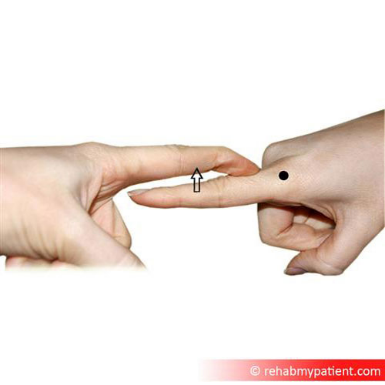 Isometric finger flexion MCP