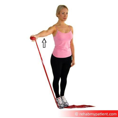Supraspinatus exercises